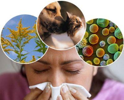 Аллергические факторы